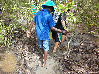 Cultural & Heritage Session at the Mangroves